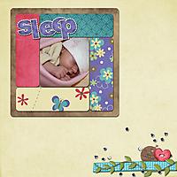 2010_11_GS_scraplift.jpg