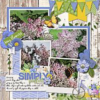 2012-05-17_My_Lilacs_cap_2017MayTemps2-L_600.jpg