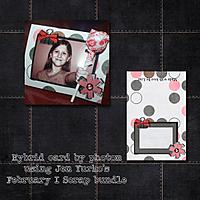 2012_02_GS_hybrid.jpg