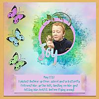2013_AJ_butterflyweb.jpg
