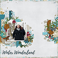 2014_FEB_Winter_Wonderland_WEB.jpg