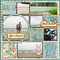 2015-06-14_Manasota_Beach_web.jpg