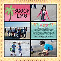 2016_12_23-Beach_edited-1.jpg