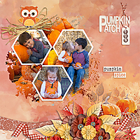 2017-pumpkin-patch-fun.jpg