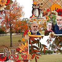 2017_11_07_Fall_color_web.jpg