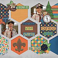 2017_AUG_Boy_Scouts_WEB.jpg
