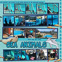 2017_CAHI_-_Day_19-217_Sea_Life_Animalsweb.jpg