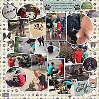 2017_CAHI_-_Day_5-61_Dogsweb.jpg