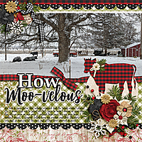 2018-02_cap-FarmhouseChristmas_web.jpg