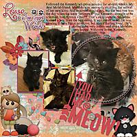 2018-06-13_Kennedy_Melinda_waw_thecatsmeow_600_bgd_thecat_smeow.jpg
