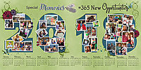 2018-calendar-of-2017-memories-32_DFD_OldOutInNew-2018-copy.jpg