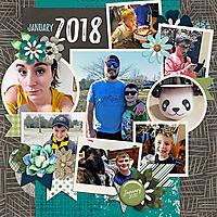 2018_JAN_Whole_Month_WEB.jpg