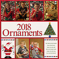 2018_Ornaments_web.jpg