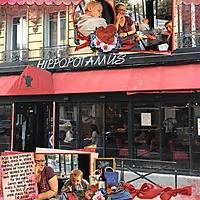 2018_Paris_-_1_12_Hippopotamusweb.jpg