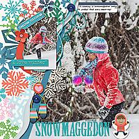 2019-02-21-snowmaggedon_sm.jpg