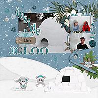 2019-02-inside-the-igloo.jpg