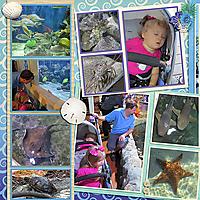 2019-07-04_LO_2013-01-24-Key-West-Aquarium-1-left.jpg