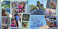 2019-07-04_LO_2013-01-24-Key-West-Aquarium-1.jpg