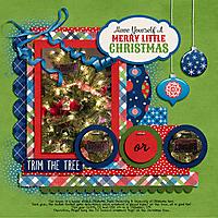 2019_12_25-Christmas-Ornament---MFish_BrightMoments_04.jpg