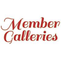 2019_Gallery_Tag_MemberGalleries.jpg