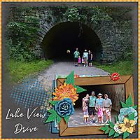 2020-09-17_LO_2016-06-12-Lake-View-Drive-1.jpg