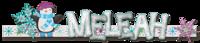 2021-01_-_Signature_-_Meleah_Siggie_upload_.png