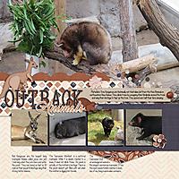 2021-07-09-_LO_2017-08-13-Albuquerque-Zoo---Australian-Animals-.jpg