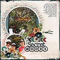 2021-08-13-1347Secret-Woodsweb.jpg