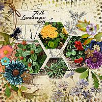 2021-September-Landscaping-MS2-SeptTempChall1-copy.jpg