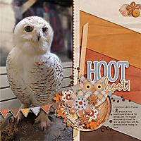250Hoot-Hoot.jpg