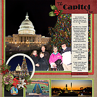 28-Capitol-Tree-DC-MFish_LivingLarge_3-copy.jpg