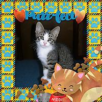 2x2FurEver_Family_2_-_KitCart_Meow.jpg