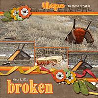 3-March_8_2021_broken_small.jpg
