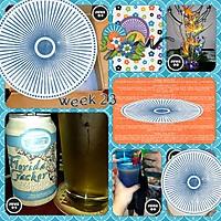 365-week-23.jpg