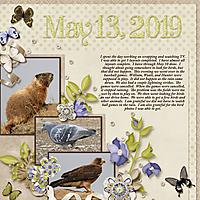 5-May_13_2019_small.jpg