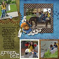 5-McKinley_green_belt_2012.jpg