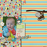 5-Month-Monkey.jpg
