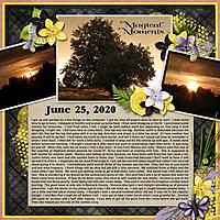 6-June_25_2020_small.jpg