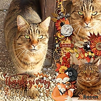 600-jcd-grateful-dt-flavorsoffall1-temp1.jpg