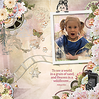 600-snickerdoodle-designs-its-a-snap-Chrissy-01.jpg