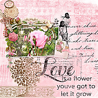 600Cindy-LavenderDesigns-Roses-are-pink02.jpg