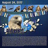 8-August_24_2017_small.jpg