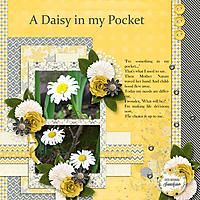 A-Daisy-in-my-Pocket.jpg