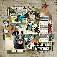 A-House-Divided-web.jpg