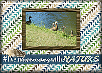 ATC-2017-124-_Live-in-Harmony-with-Nature.jpg