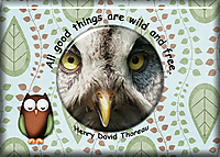 ATC-2018-095-All-Good-Things.jpg