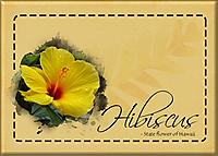 ATC-2020-097-Hibiscus.jpg