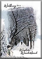 ATC-2020-165--Walking-in-a-Winter-Wonderland.jpg