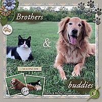 Aug_2020_baron_big_brothers_sml_gbl_dog_days_of_summer_DFD_August2020_TemplateChallenge.jpg