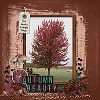 Autumn-Beauty3.jpg